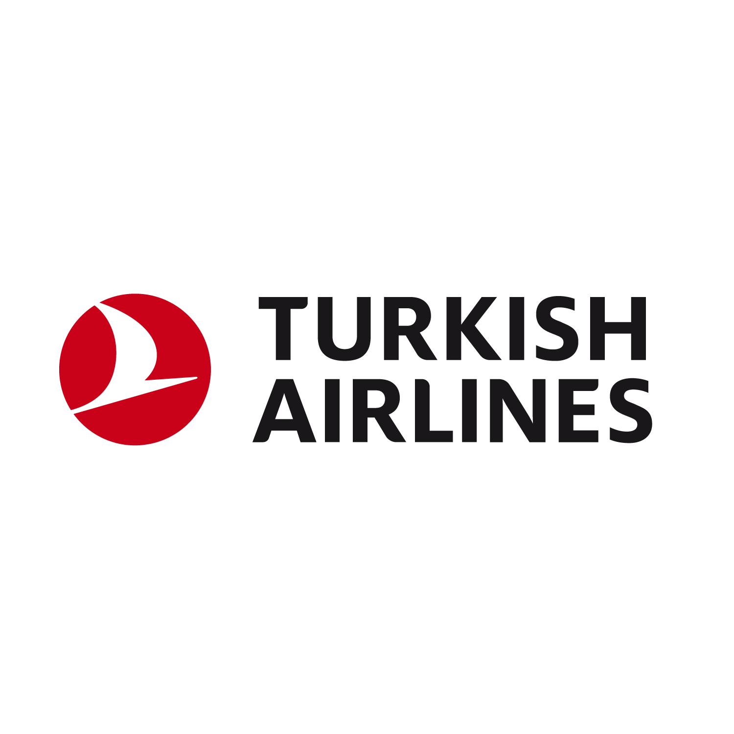 THY-Airline-Picus